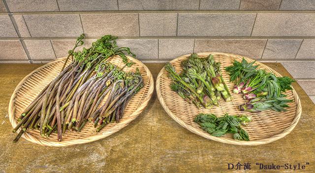 ワラビ、タラの芽、ハリギリの芽、ウド
